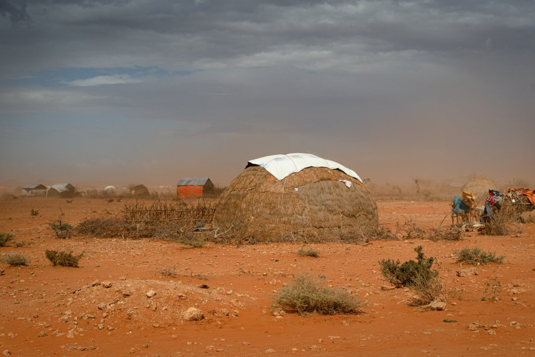 Extreme temperatures, heat stress and forced migration