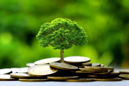 Cities look to climate-friendly greenbacks to fund smart projects