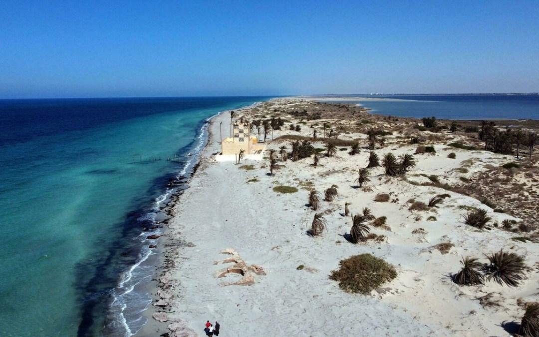 Libya's wildlife treasure island at risk ofruin