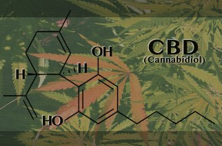Some Interesting Facts about Cannabidiol Not Everyone Knows