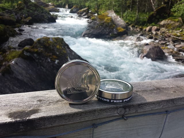A Detailed Review of Swedish Snus