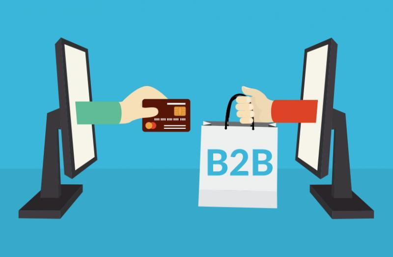 How to choose the best B2B eCommerce platform to scale and grow your  business? | MENAFN.COM