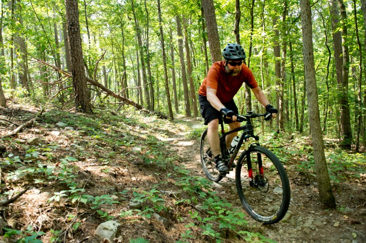Man mountain biking on trail system