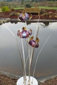 waterBlossoms_lrg