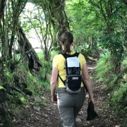 Mentoring and Walking in Nature