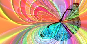 Rituelle Butterfly Transformation Image2