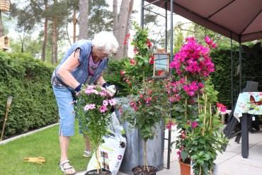 Meneertje gaat bloemen halen.