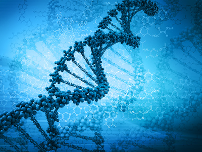 antioxidants protect the DNA