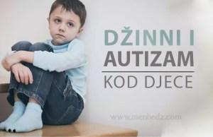 Dzinni i autizam kod djece