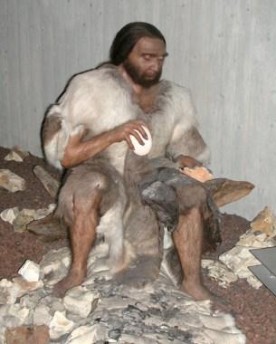 Museet, Neandertal