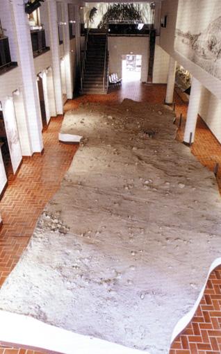 Rekonstruktion af det arkæologiske lag, museet