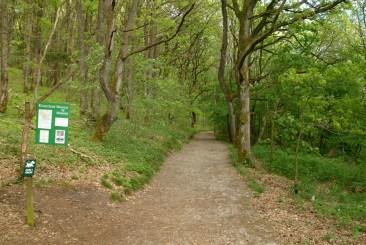 Skovstien, der fører ind til Klosterlund Museum (300 m)