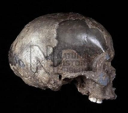 Tidlig Homo sapiens, Mladec, Tjekkiet, 36.000 år