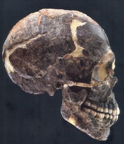 Tidlig Homo sapiens, Qafzeh, Israel, ca. 120.000 år