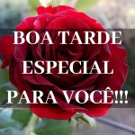boa tarde com rosas vermelhas