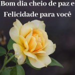 bom dia com rosas amarelas
