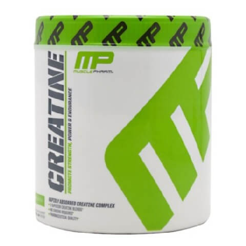 muscle best creatine supplement for men in India
