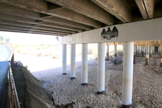 Die Fledermausbrücke