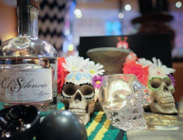 Oyamel Day of the Dead Festival
