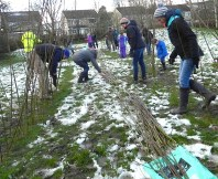 Volunteers from Menston in Bloom and Wharfedale Naturalists planting willow wands in Menston Primary School's field
