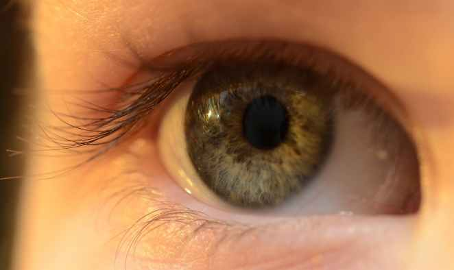 predictions for our future - internet contact lens