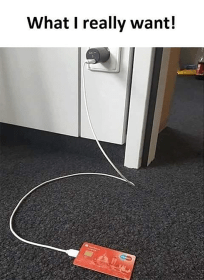 What I really want charging cable connected to credit card