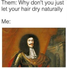 Why don't you just let your hair dry naturally meme