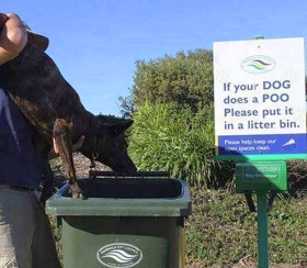sign says put dog into trash