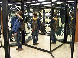 Addressing Symptoms: The Birth of the Delusional System and Bizarre Thoughts (Fixed & Solvent)