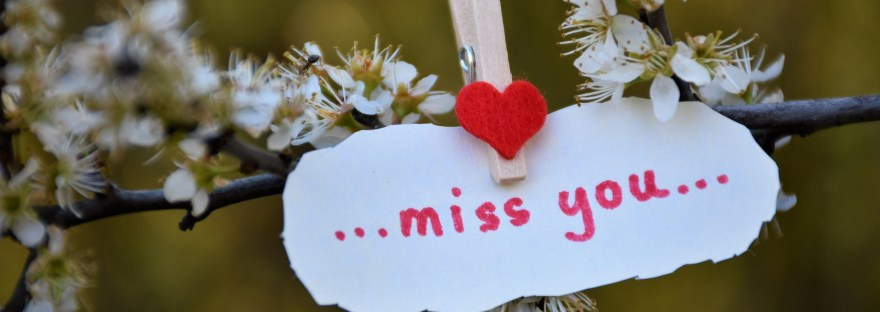 miss you message pinned to a flower branch