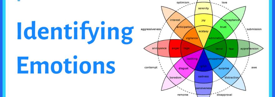 Identifying emotions - image of Plutchik's emotion wheel