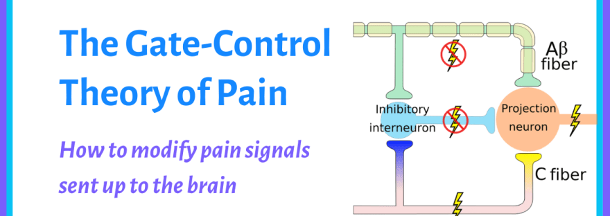 diagram of the gate control theory of pain