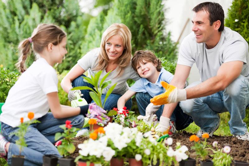 Mental Gardener - Blog Post Image - Picture of Family Gardening - Mental Health Foundation