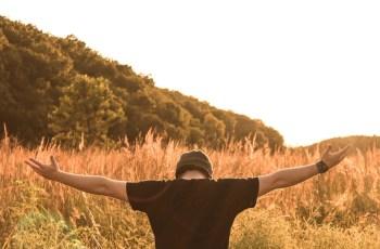 Lifestyle Business é tudo o que você precisa para empreender?