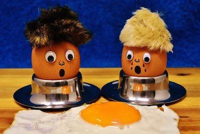 たんぱく質である卵