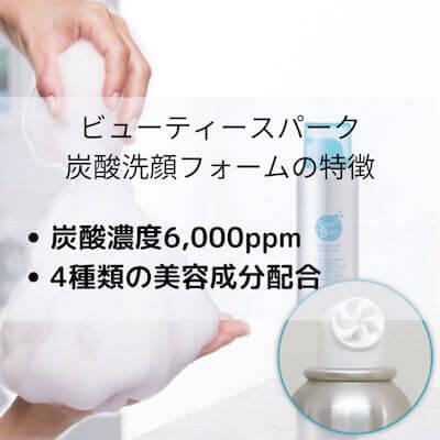 ビューティースパーク 炭酸洗顔フォーム の特徴