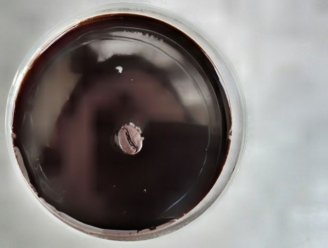 panna-cotta-al-caffe