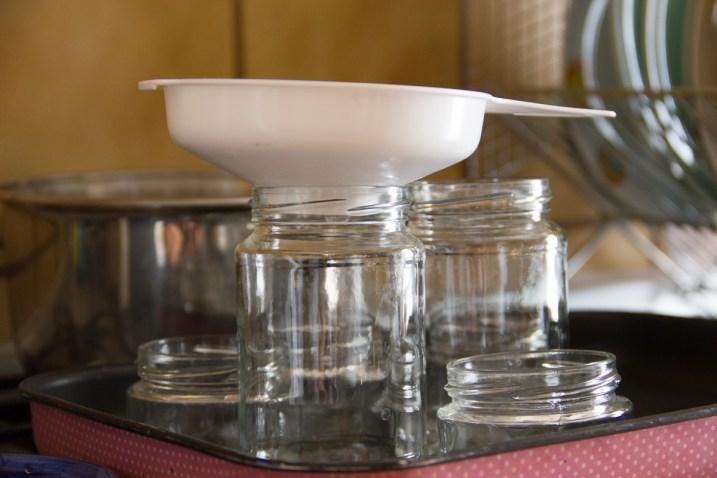 confettura-fragole-menta-pepe-6