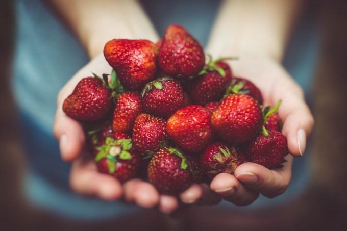 fragole per merenda