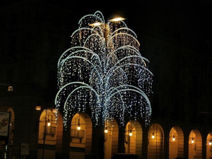 how to put up christmas lights on a tree outside newchristmas co