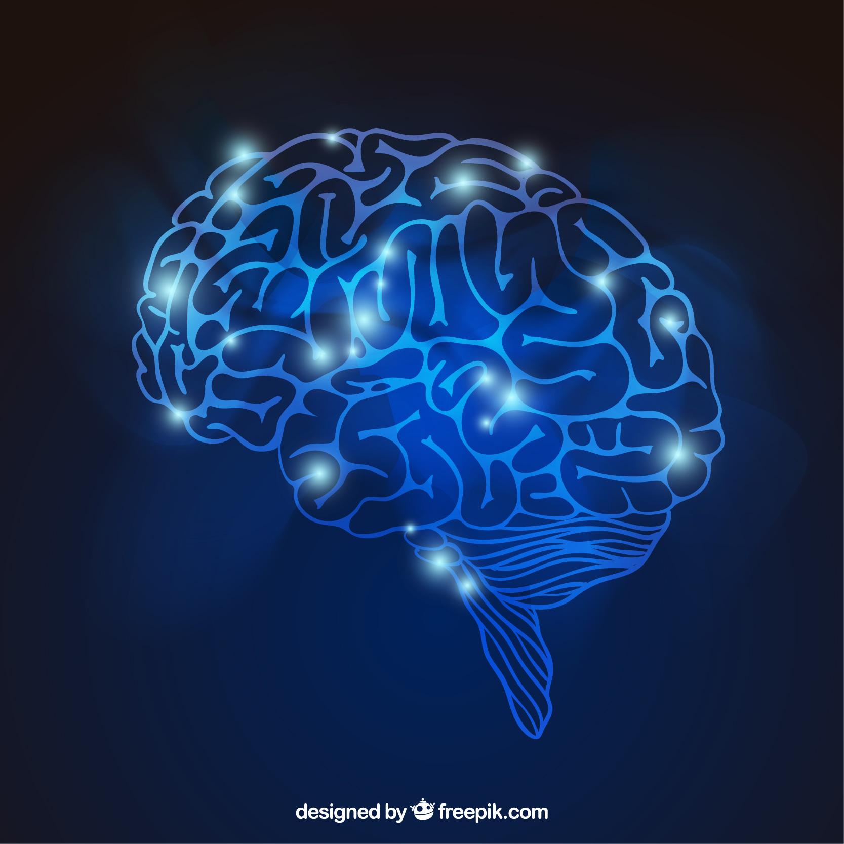 Cambios cerebrales