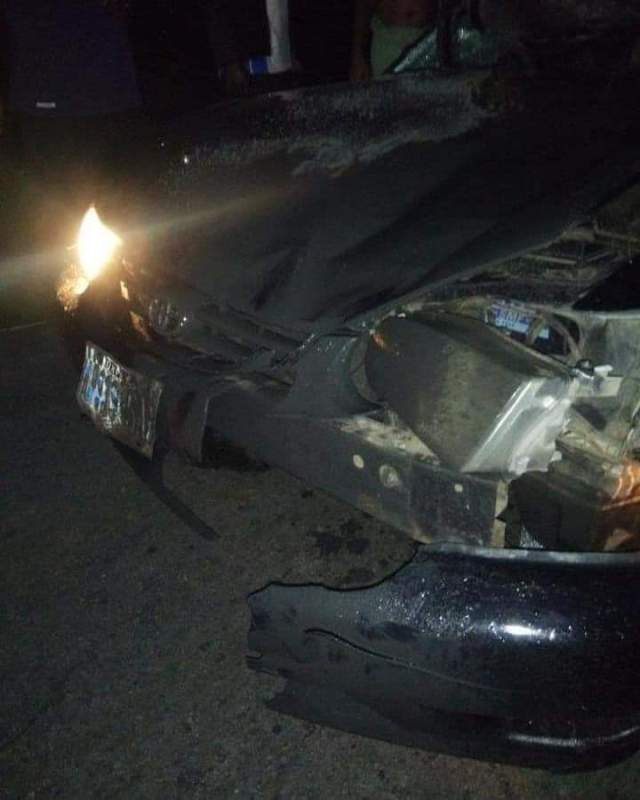 cow-crashes-into-car-in-delta-ft