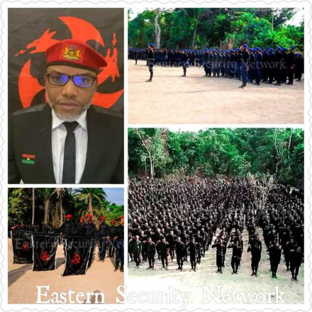 I'll Inform Northern Terrorists To Fight Against IPOB's Eastern Security Network — Arewa Youths Leader
