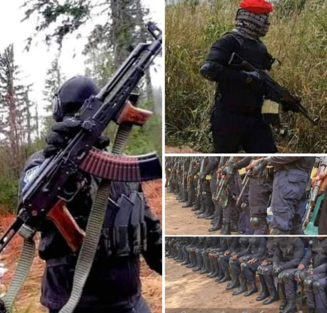 IPOB has informed the Nigerian Government that the security outfit, Eastern Security Network has come to stay.