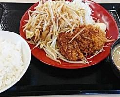 かつや「スタミナ炒めとチキンカツ定食」2019年3月29日実物