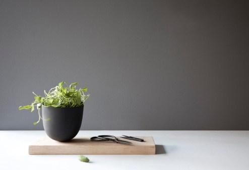 grow pot loc3
