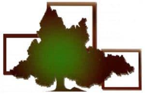 Logo entreprise Davion 5