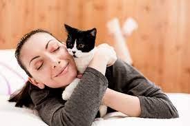 cara memberi makan anak kucing