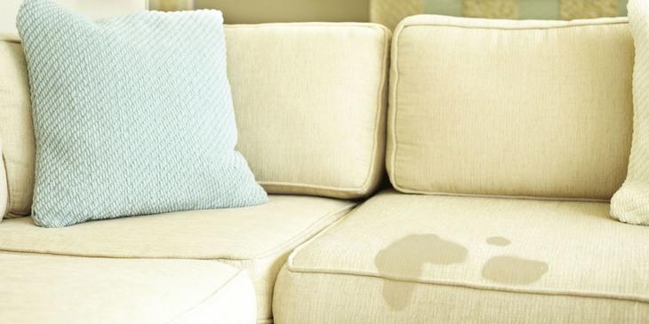 Cara menghilangkan bau kencing kucimg di sofa