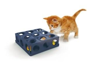 cara memilih mainan kucing